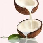 Máy ép nước cốt dừa bằng tay có giá bao nhiêu?