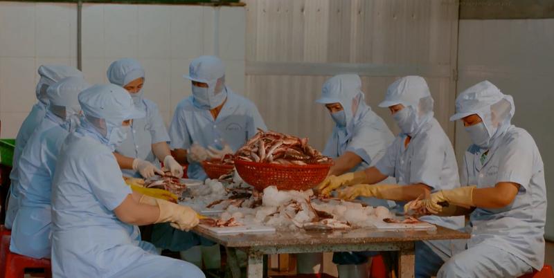 Sơ chế cá tại cơ sở sản xuất chả cá
