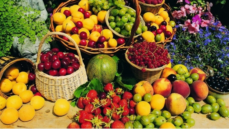lựa chọn hoa quả tươi để sấy