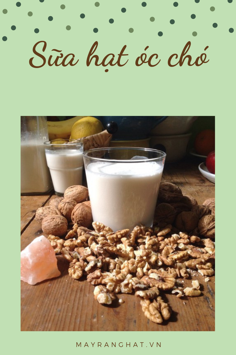 cách làm sữa hạt óc chó